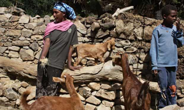 Letay Gebre-Michael and her son with goats