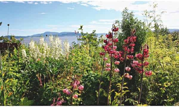 Alys Fowler The Garden That Looks And Tastes Good Life And Style The Guardian