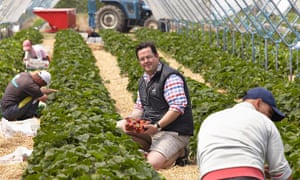 David Long employs EU migrants to pick his strawberries on his farm in Kent