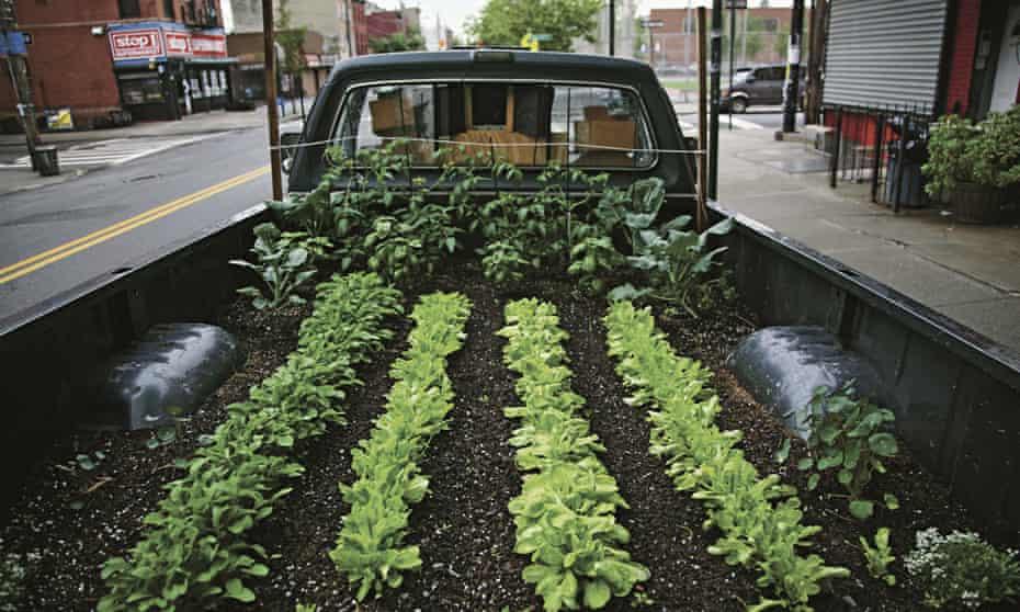 Gardens: truck