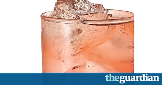The good mixer: plum shrub with ginger ale | Life and style | The ...