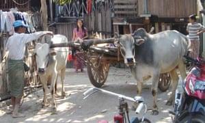 burma cart