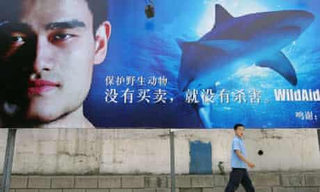 Yao Ming shark aid campaign
