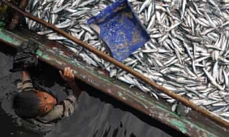 Fishing in Papua