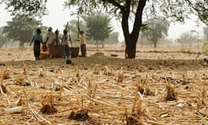 Women pound millet in the Sahel region, which is facing food insecurity as a result of the changing climate.