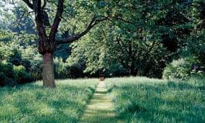 Grassy garden path