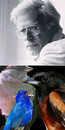 Composer Jonathan Harvey (top) and the birds which inspired his Bird Concerto with Piano Song