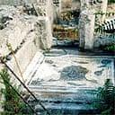 Lion's head mosaic site