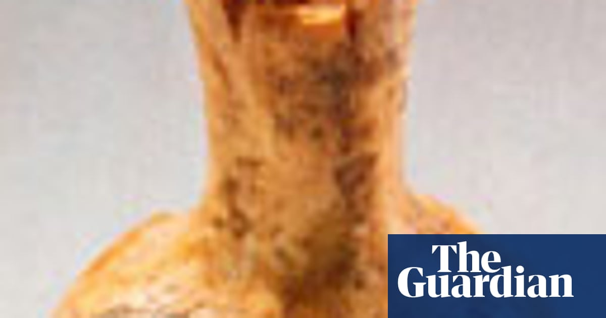 Faking it | World news | The Guardian