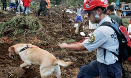 A volunteer uses a rescue dog to search for victims of a landslide