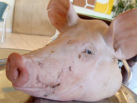 What are you doing today?? Pigs-head-on-a-platter-003