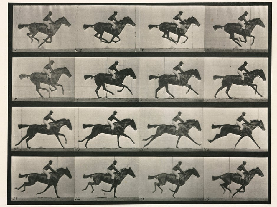 'Animal Locomotion (Plate 626)'. Sequence with jockey on horseback by Eadweard Muybridge (1830 - 1904), English-born American photographer and inventor Illustration: SSPL/Getty