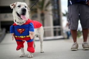 Comic-Con Fans Attend The Annual Convention In San Diego