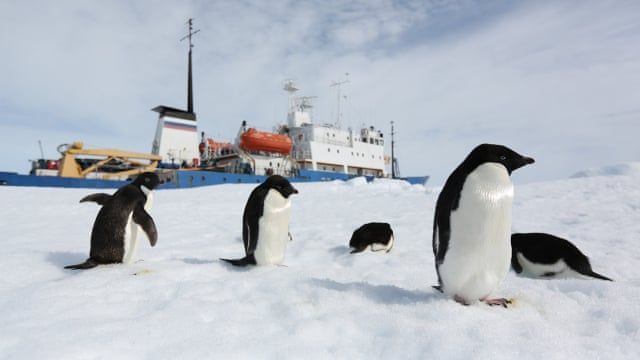 Rescued scientists bring back a warning from the antarctic science rescued scientists bring back a warning from the antarctic science the guardian publicscrutiny Image collections