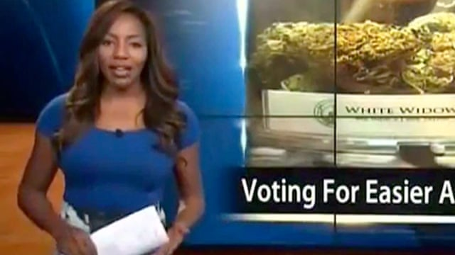 Reporter who quit on air to fight for pot legalization faces decades