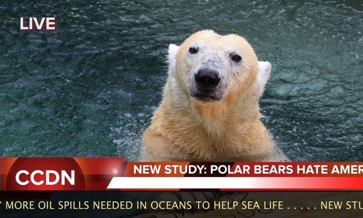Climate Change Denier News Satire Video Environment The