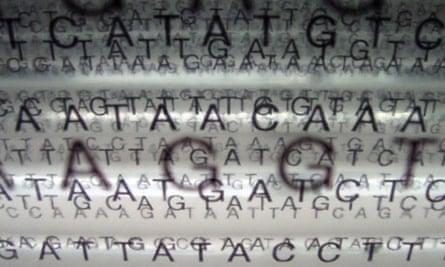 gattaca genetic sequencing