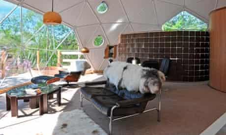 Ecological but luxurious: Ecopod Boutique Retreat