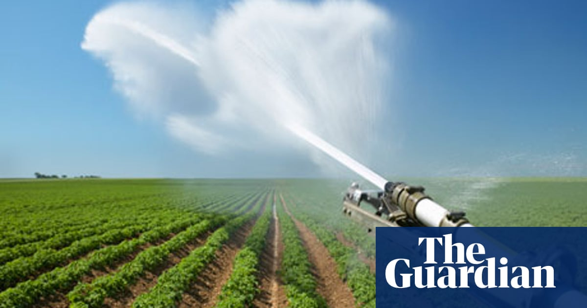 Securing a sustainable future | Guardian Sustainable