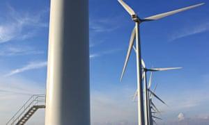 Report: wind farms