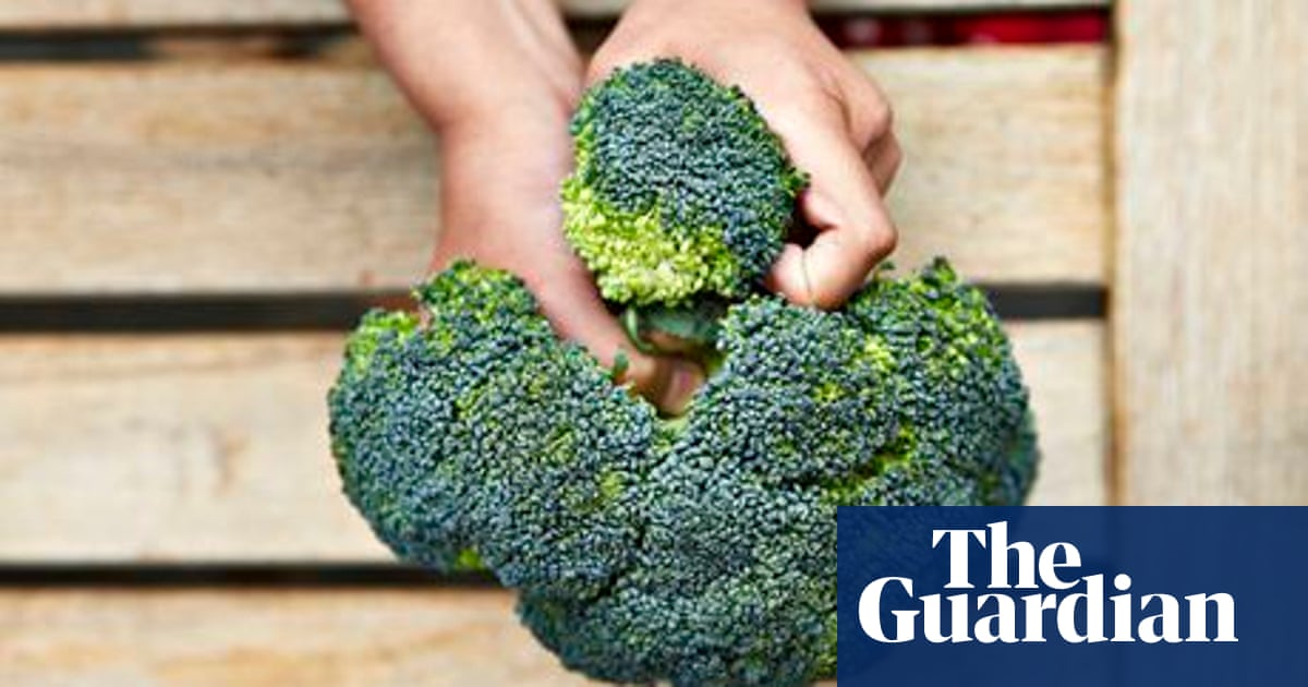 How to cook broccoli   Back to basics   Life and style   The Guardian