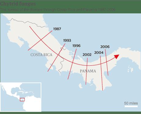 Carte - propagation de la maladie du chytride en Amérique centrale