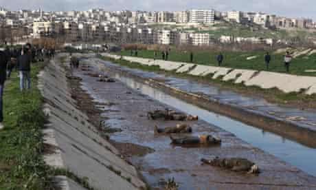 Bodies found in Aleppo canal