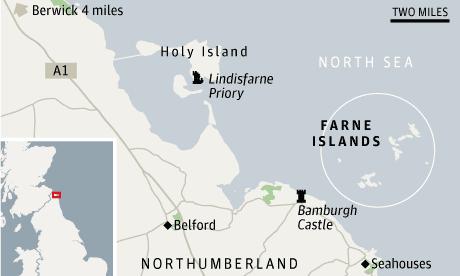 Puffins Farne Islands