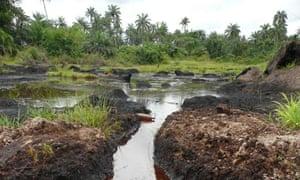 The impact of an oil spill near Ikarama, Bayelsa State, Niger Delta