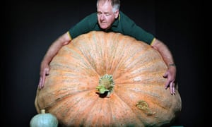 A giant pumpkin at the Royal Easter Show in Sydney, Australia