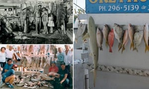 Composite: Recreational fish landings in the 1950s, 1980s and 2000s in Key West Florida