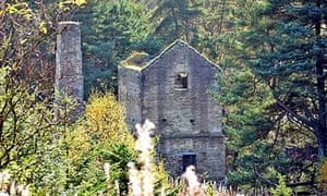 Country Diary: Shildon castle, Northumbria