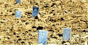 Anonymous graves in Andijan, Uzbekistan