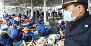 A Vietnamese veterinary officer supervises an authorized poultry slaughterhouse in Hanoi in an effort to contain the spread of bird flu. Photograph: Hoang Dinh Nam/AFP/Getty Images