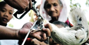 An elderly woman gets her duck injected with bird flu vaccine in the Indonesian province of Banten. Photograph: Bayu Aji/AFP/Getty Images