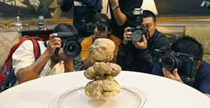 The white Alba truffles auctioned in Piedmont