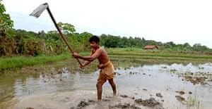 SD Ranjith prepares his land for planting in southern Sri Lanka