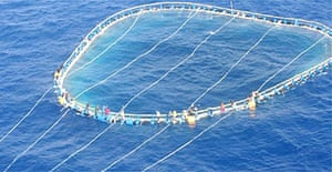 Italian rescuers took 27 people to the island of Lampedusa at the weekend. They had clung to nets for three days