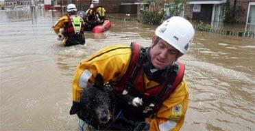 Flooding fireman rescues dog