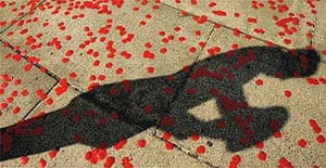 The shadow of a soldier amid poppy petals dropped during a flypast