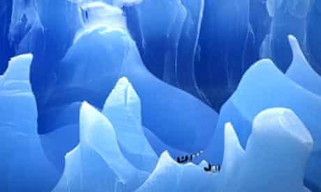 Penguins on an iceberg in Antarctica