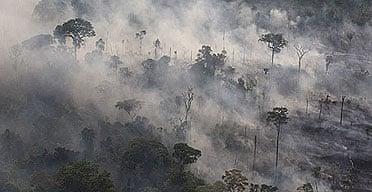 Burning rainforest in Para state, Brazil