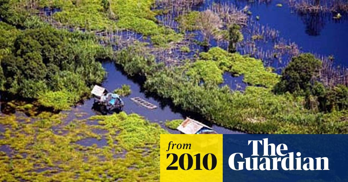 Greenpeace links HSBC climate change fund to deforestation