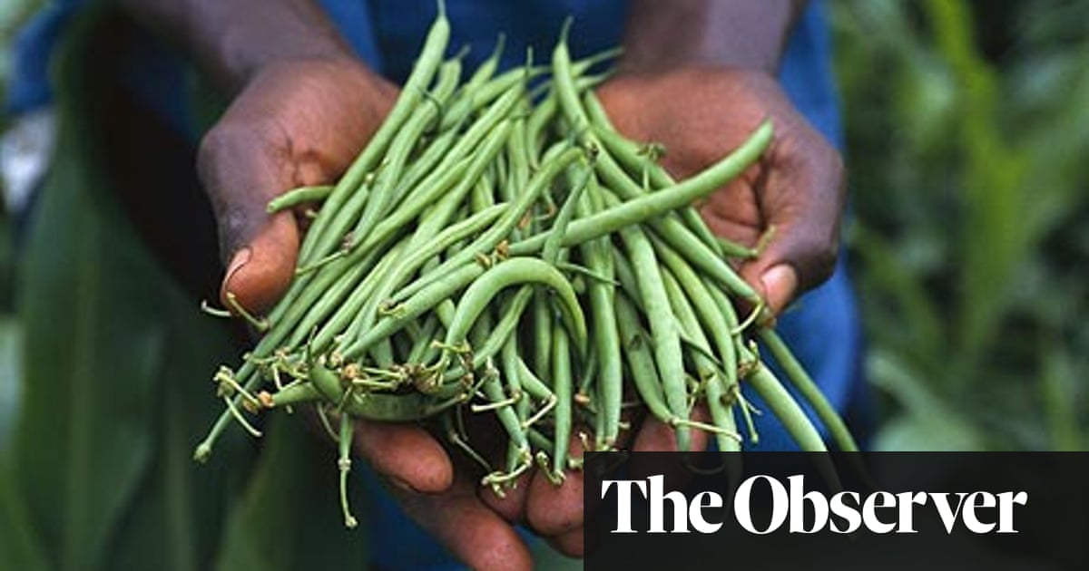 How the myth of food miles hurts the planet | Environment | The Guardian
