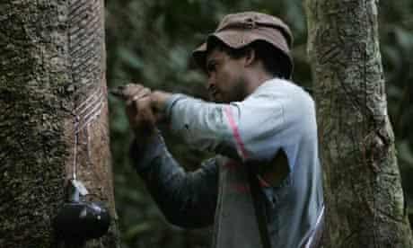 Rubber tapper in Brazil