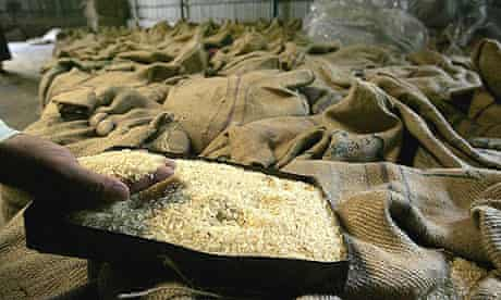 An Indian rice worker checks the output at a mill in Midnapore, near Kolkata.