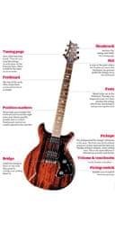Anatomy of a guitar