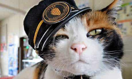 Tama the cat at Kishi station in Japan