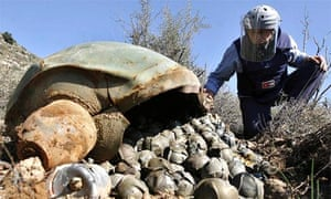 A Mines Advisory Group technician inspects a cluster bomb unit in the Lebanese village of Ouazaiyeh