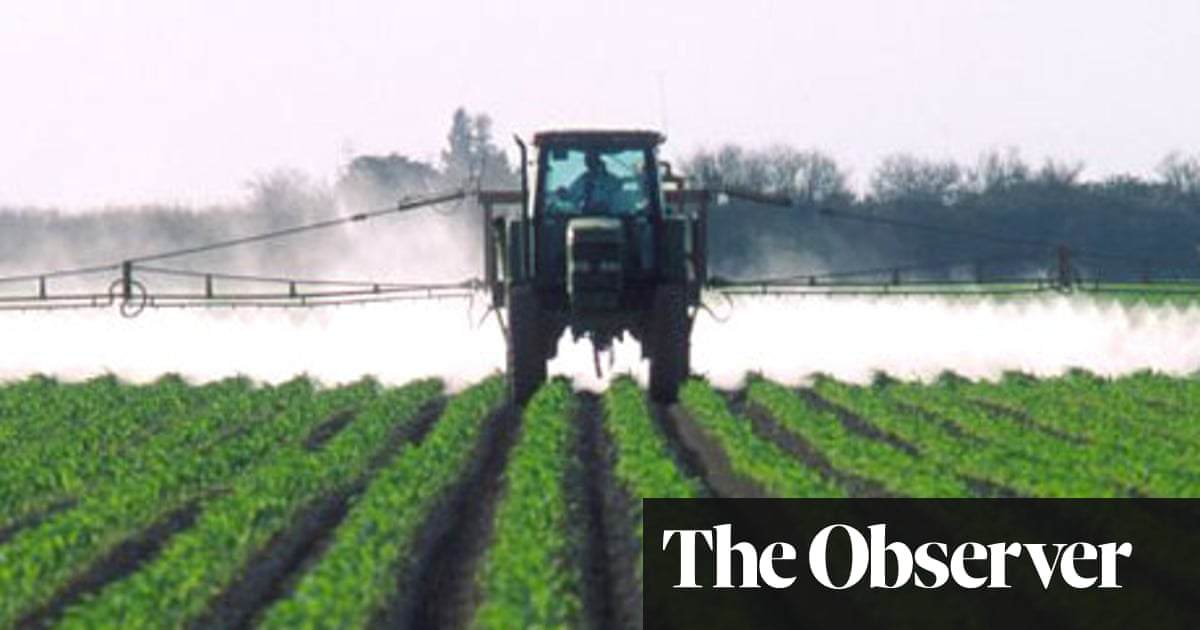 Home-grown veg ruined by toxic herbicide | Environment | The